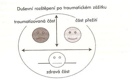 trauma-stepeni